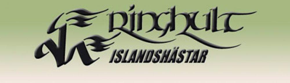 Ringhults Islandshästar